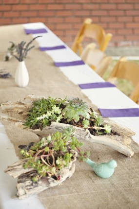 outdoor-diy-wedding-wood-and-succulent-centerpieces
