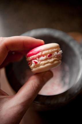 macaron-step-by-step-tutorial-stacy-able-photography-dip-in-crushed-candy-canes