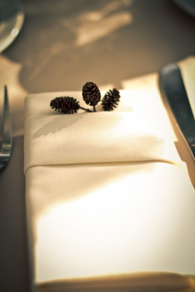 alder-cones-wedding-napkins