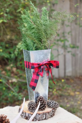 camping-birthday-party-plaid-decor