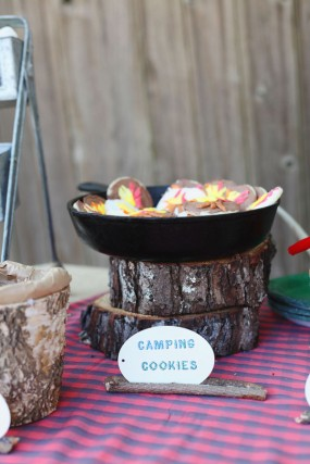 camping-party-cookies