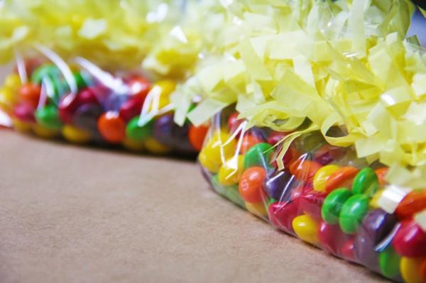 diy-ziplock-bag-party-favors