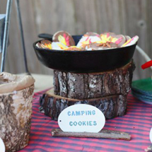 Easton's DIY Camping Birthday Party