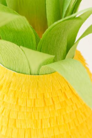 Fringe Pineapple DIY