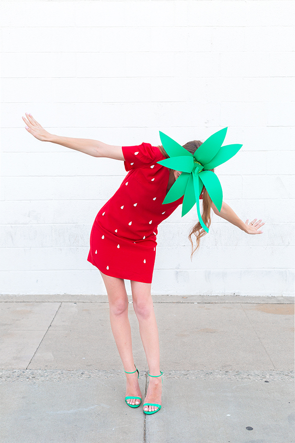 Diy strawberry costume26 1g solutioingenieria Images