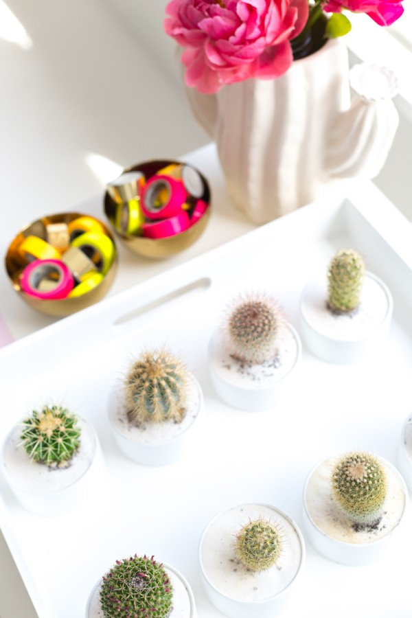 DIY Cactus Favors in PVC Pipe!
