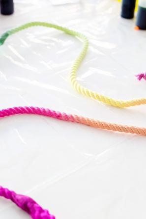 DIY Technicolor Dog Leash