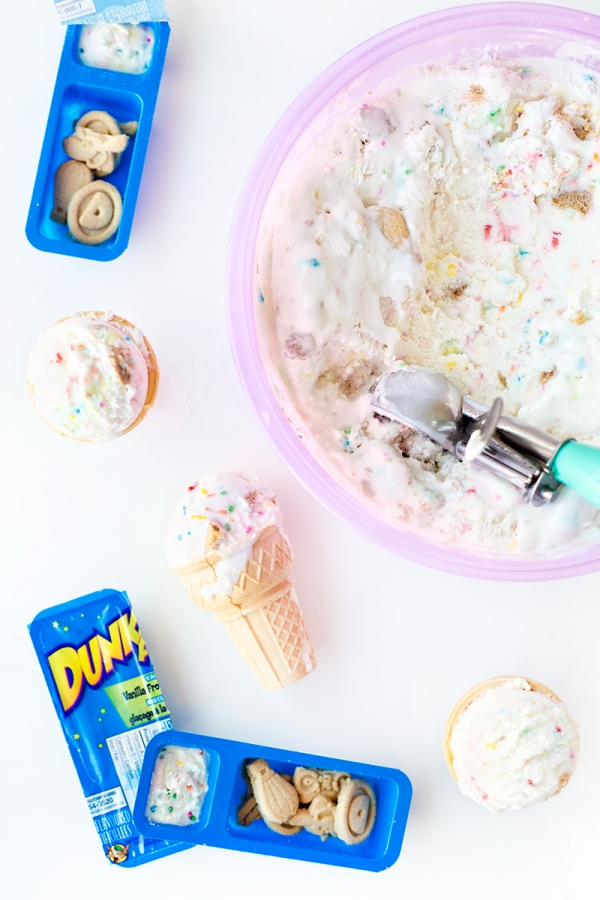 Dunkaroo Ice Cream (Recipe!) | studiodiy.com