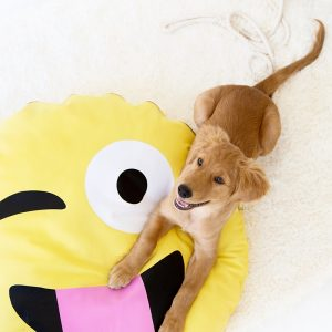 DIY Emoji Dog Bed