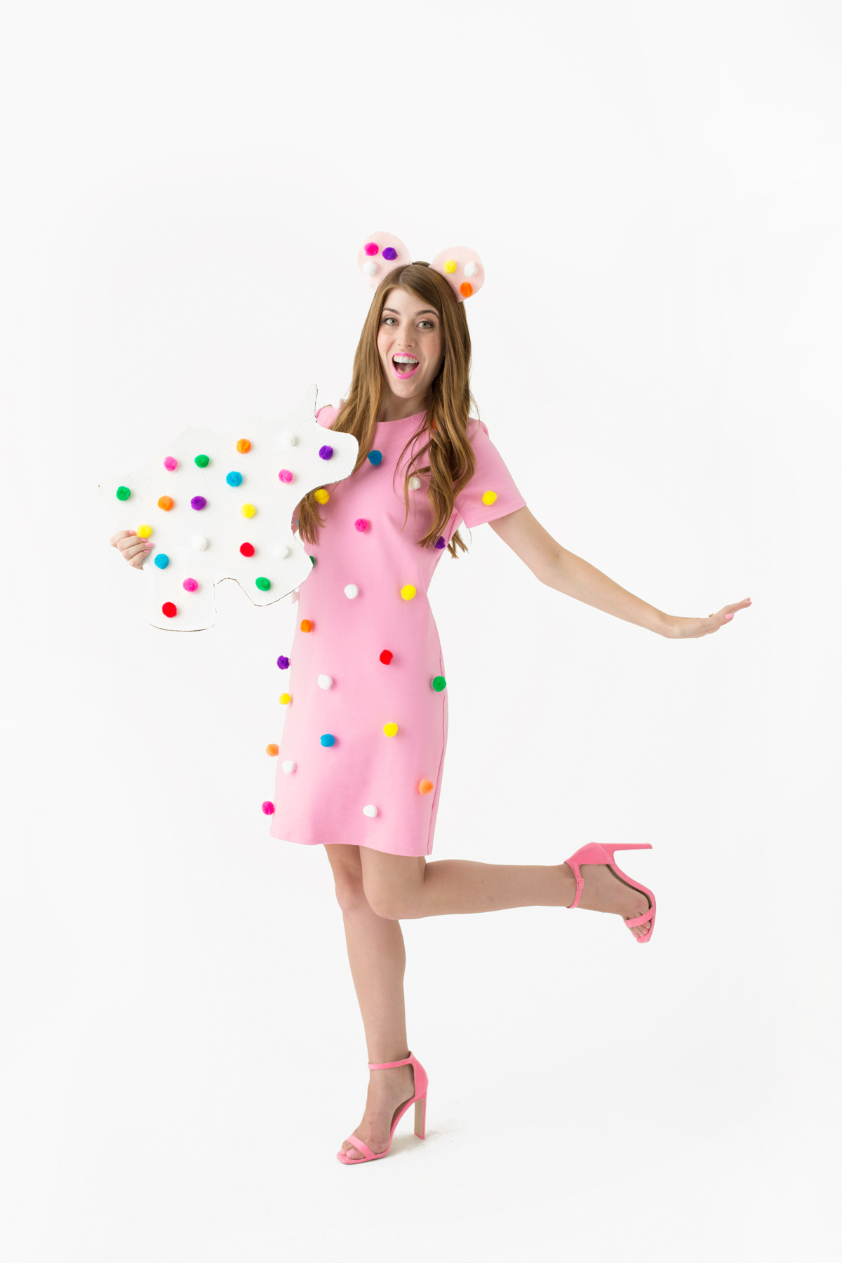 Diy Frosted Animal Cookie Costume Studio Diy