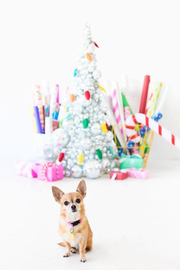 Studio DIY Christmas Decor!