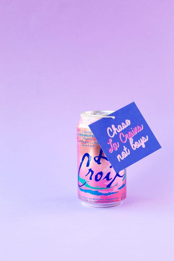 Chase La Croixs Not Boys | Five Minute Free Printable Valentines