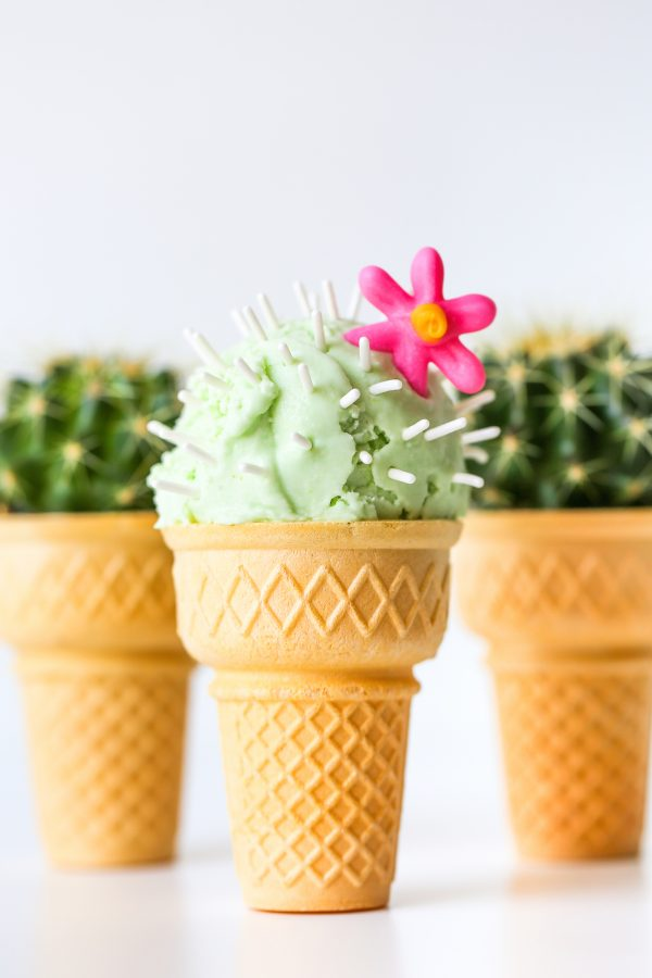 Cactus Ice Cream Cones