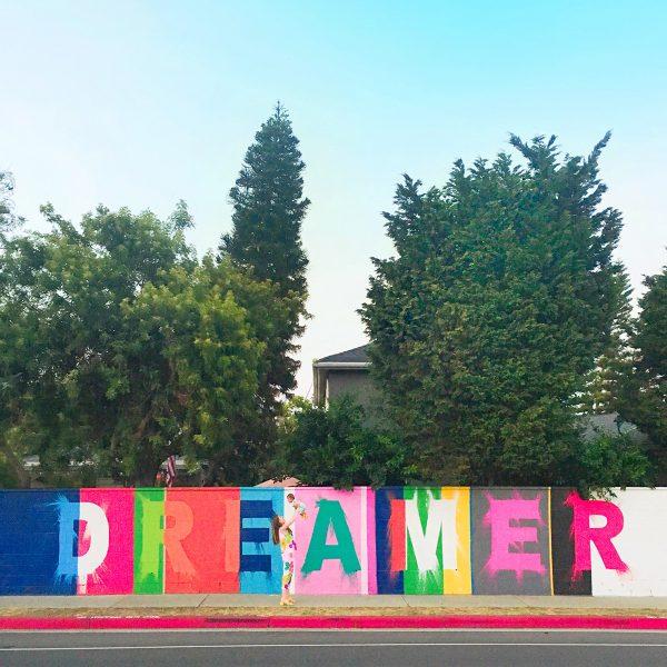 Dreamer Wall