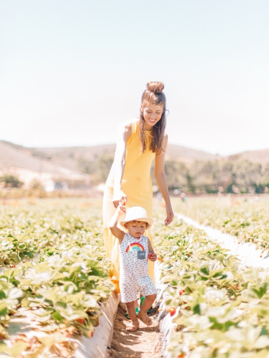 Family Day: Strawberry Picking!