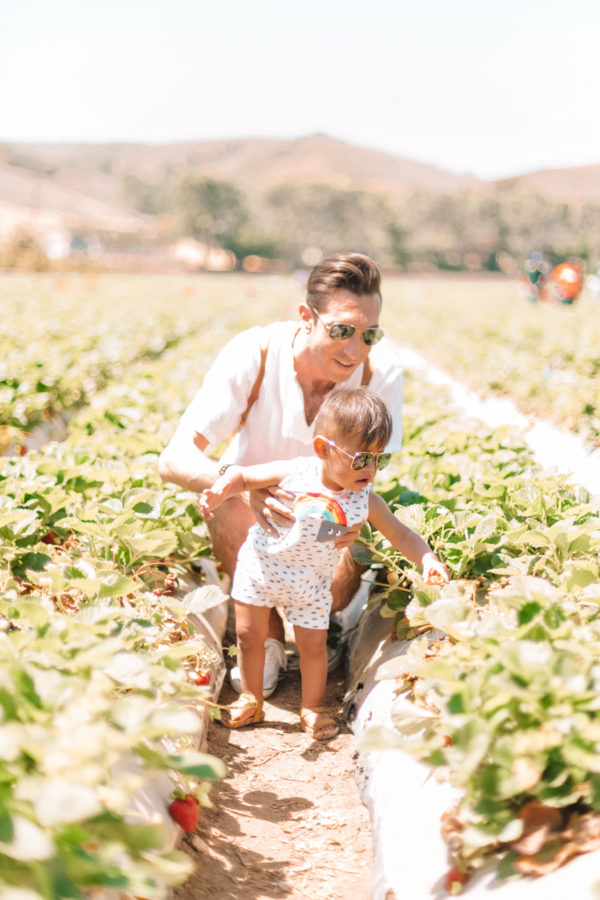 Family Day: Strawberry Picking at Underwood Farms
