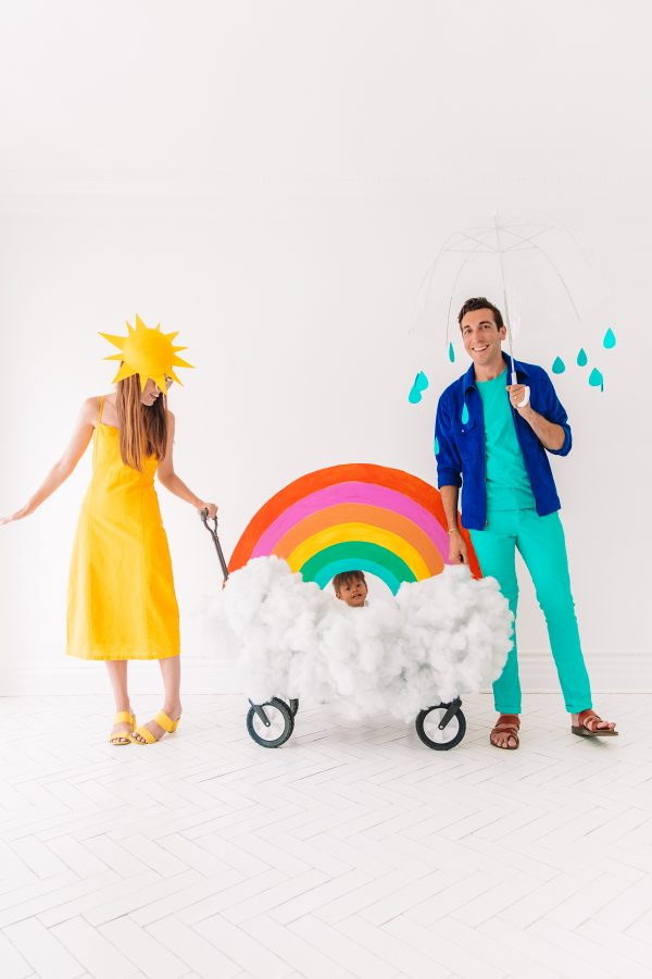 DIY Family Weather Costume
