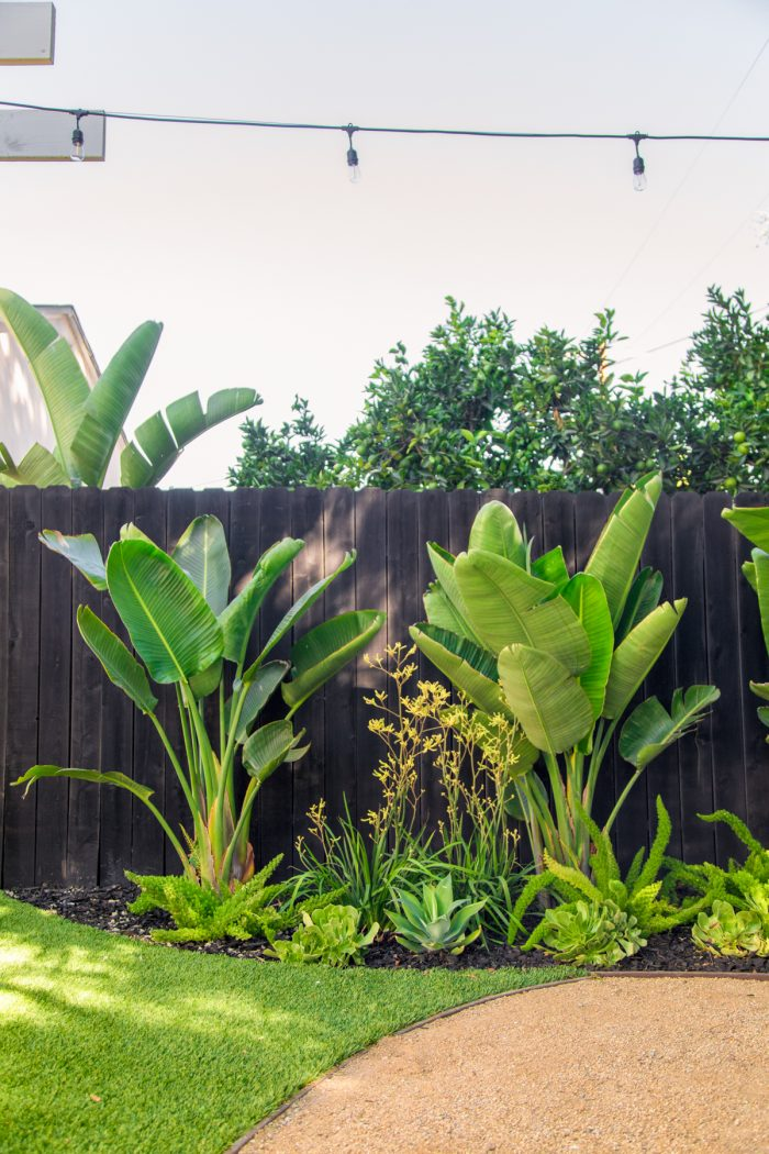 Colorful, Tropical Backyard Makeover