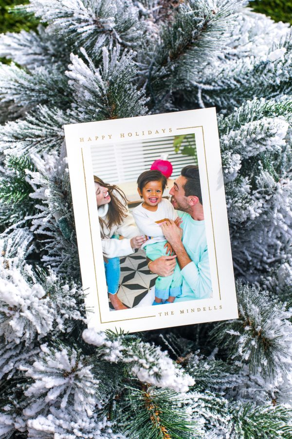 Our 2019 Family Holiday Cards