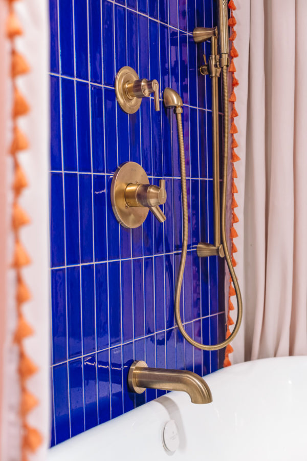 Blue and Terra Cotta Animal Themed Kids Bathroom