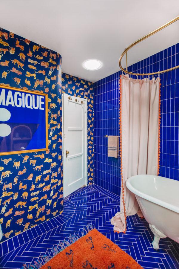 Blue and Terra Cotta Bathroom Renovation