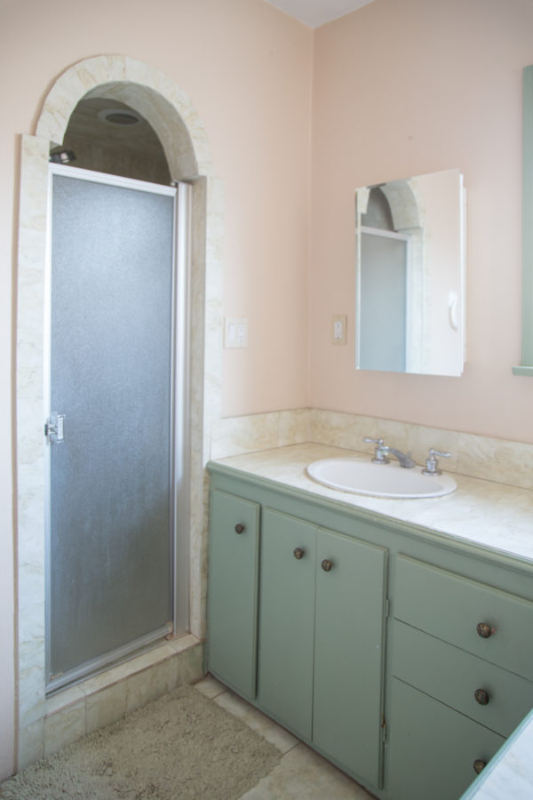 kids bathroom renovation before