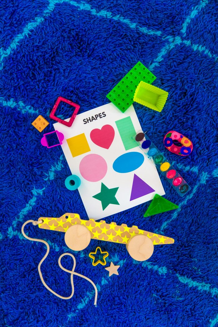 Shape Hunt Activity for Toddlers