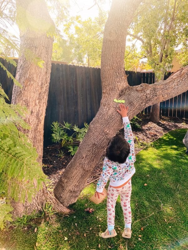 Toddler Paper Caterpillar Hunt