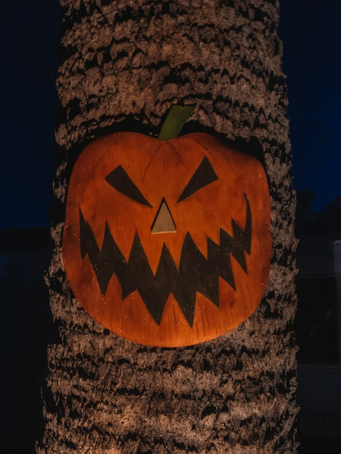 Nightmare Before Christmas Halloween Town Pumpkin Door on Tree