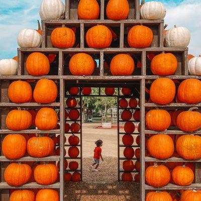 Happy Weekend! (+ Best Halloween Decorations in Los Angeles)