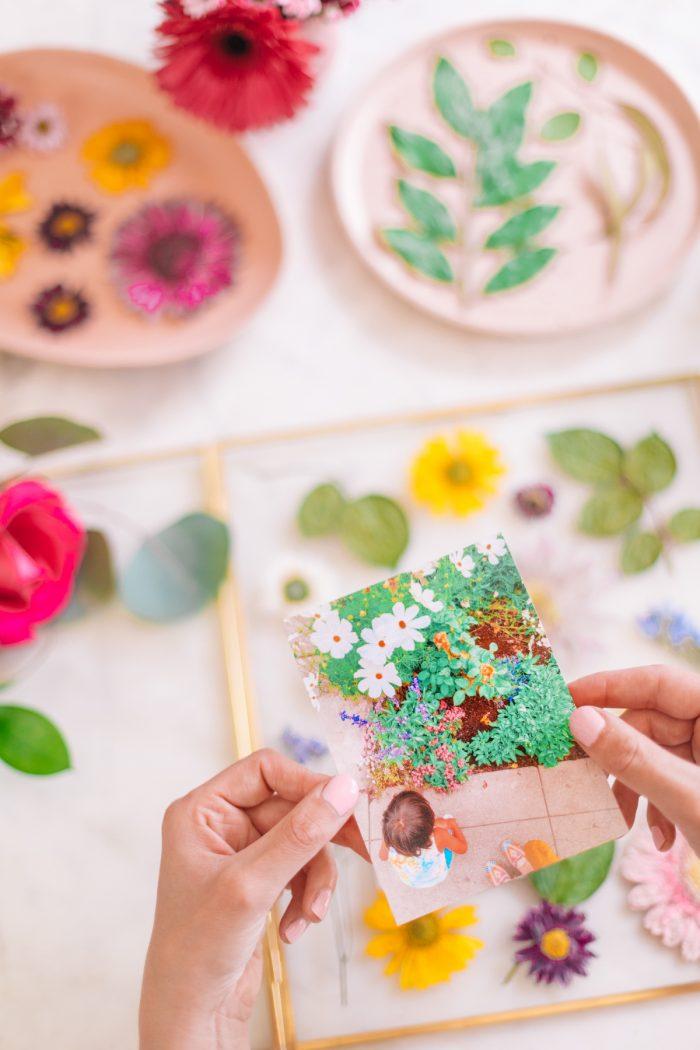 Adding Photo to Pressed Flower Art