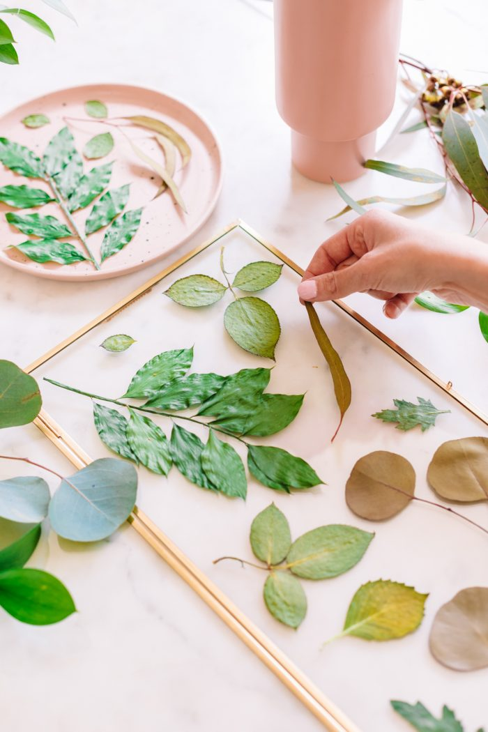 Pressed botanical art how to