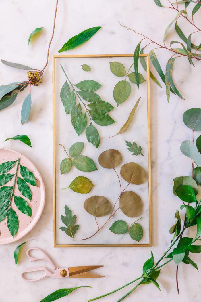 Green Botanical Pressed Flower Frame