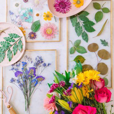 DIY Pressed Flower Keepsake Frames (+ How To Press Flowers in 2 Minutes or Less!)
