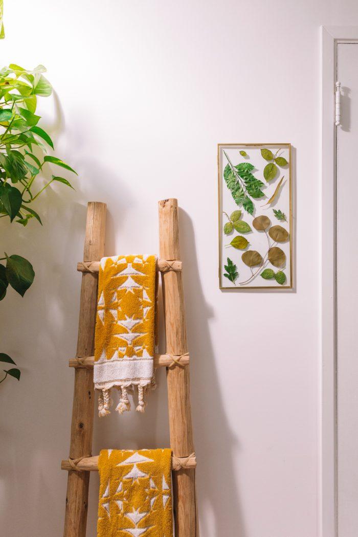Pressed Botanical Art Hanging on Wall
