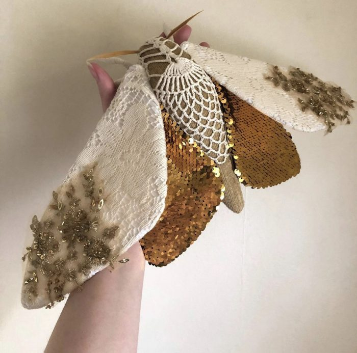 Molly Burgess Designs Butterfly