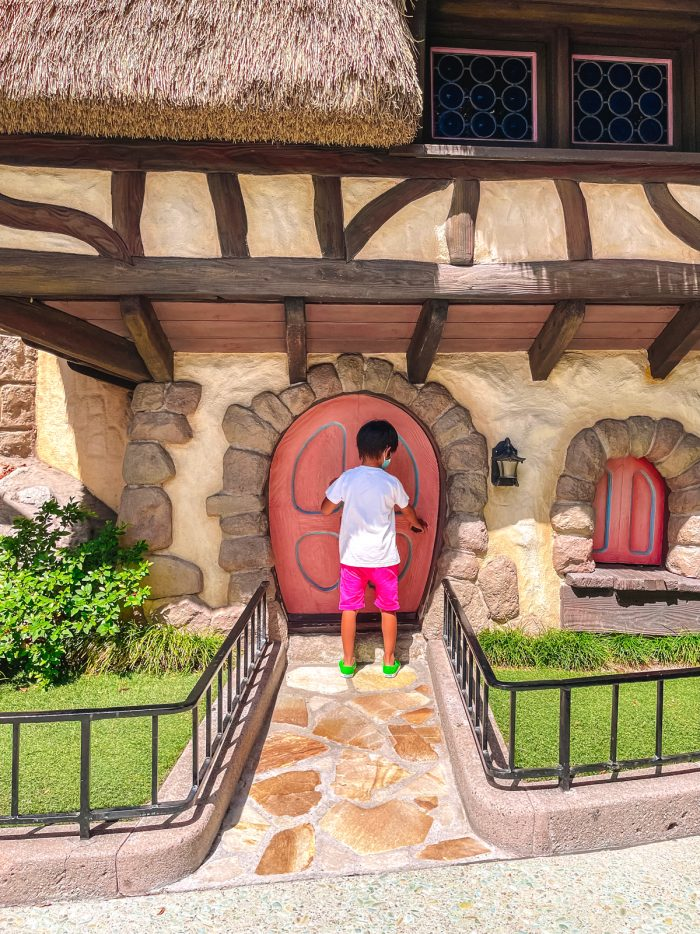 Fantasyland Alice in Wonderland Door in Disneyland