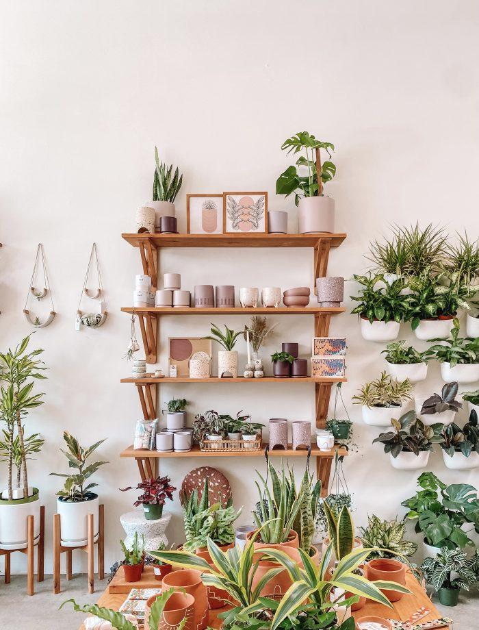 Greenwood Plant Store