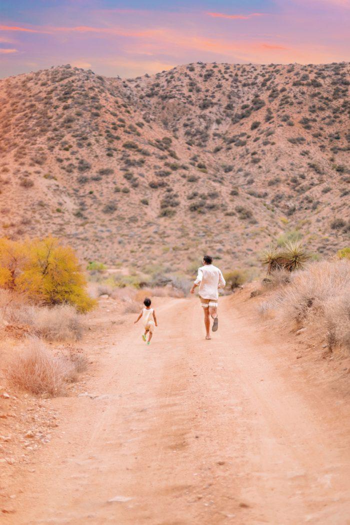 Yucca Valley Desert