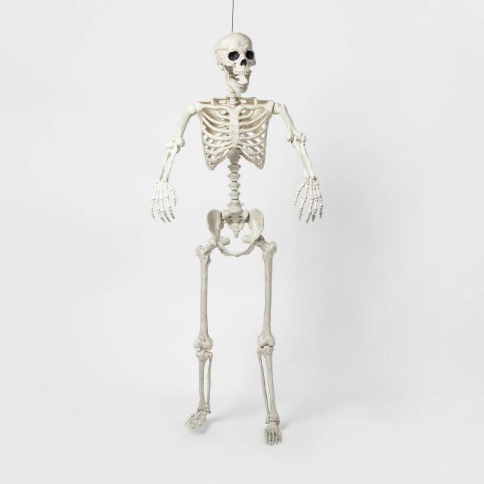 Five Foot Skeleton