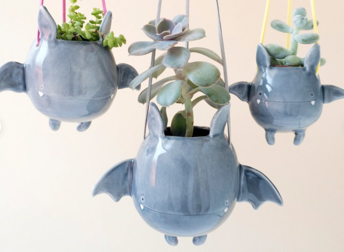 hanging bat planters with succulents inside on a white background
