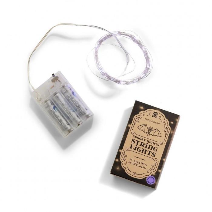 Purple string lights and box